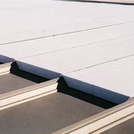 Roof Gallery Image Template Small Placeholder 2
